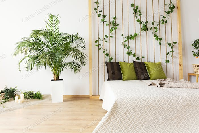 Dreamy bedroom with decorative plant