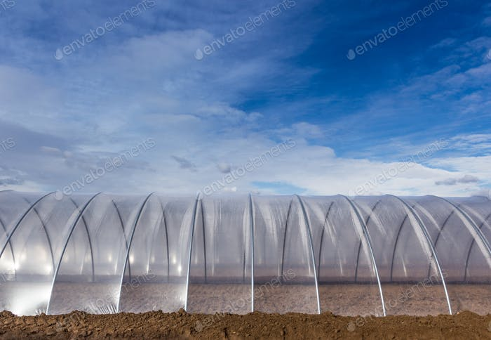 Greenhouse exterior on blue sky