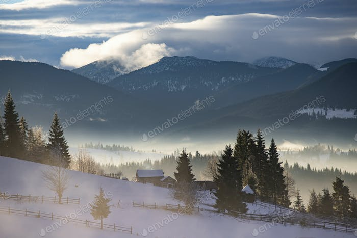 Thumbnail for Winter forest in dramatic sunrise in the Carpathians, Romania.