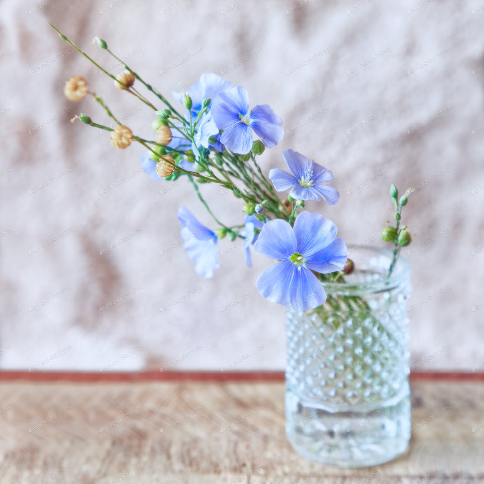 Sprigs Of Flax With Flowers Photo By Alekssg On Envato Elements