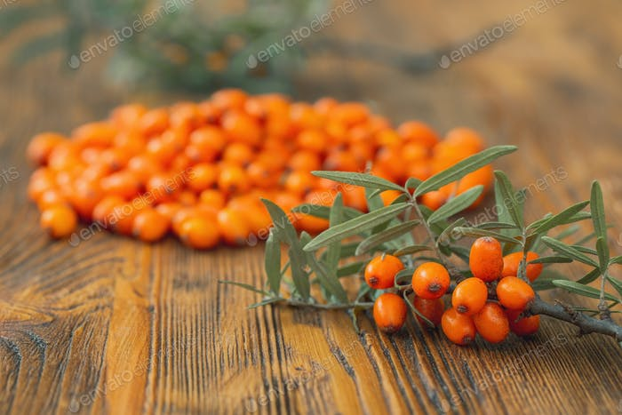Bunch of sea buckthorn berries on a wooden background in autumn