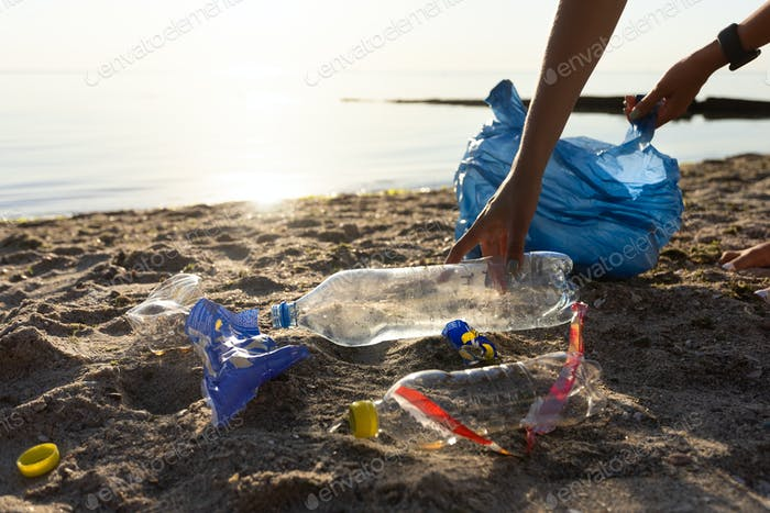 Volunteer Cleaning Polluted Beach Picking Up Plastic Trash Outdoors, Cropped
