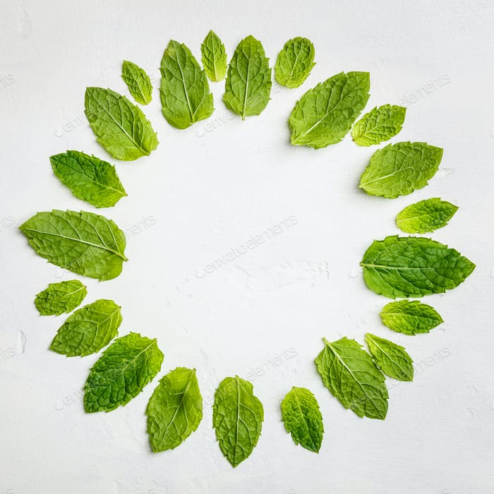 Mint leaves composition, flat lay, top view