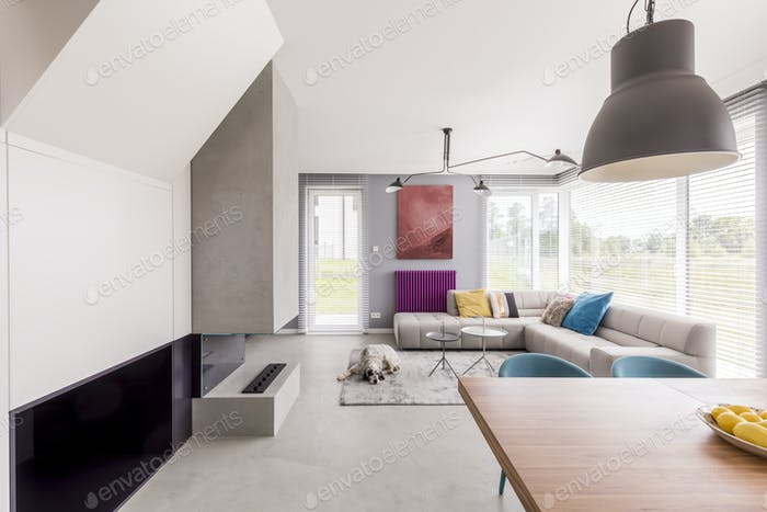 Colorful and modern day room