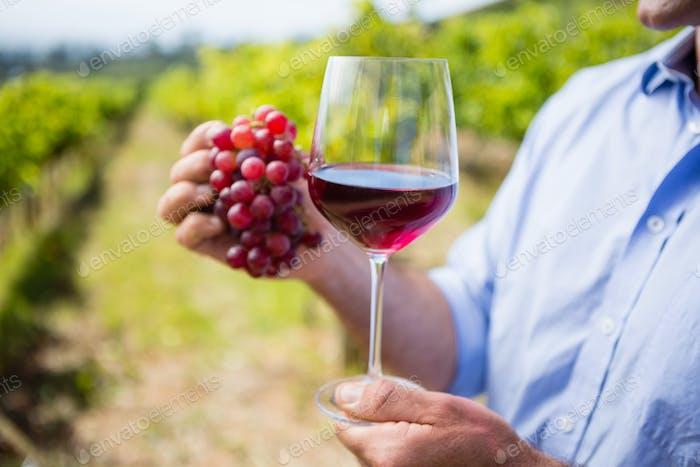 Mittelteil des Weinbauers mit Trauben und Glas Wein