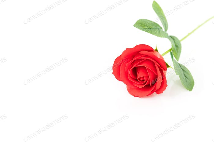Single Red plastic fake roses on white_