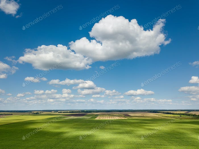 Beautiful rural lanscape with blue sky and white clouds, agricultural fields, meadows, green trees