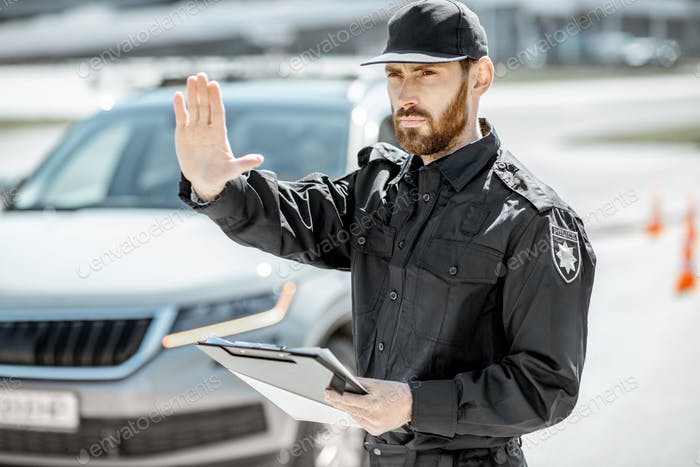 Portrait of a policeman on the road