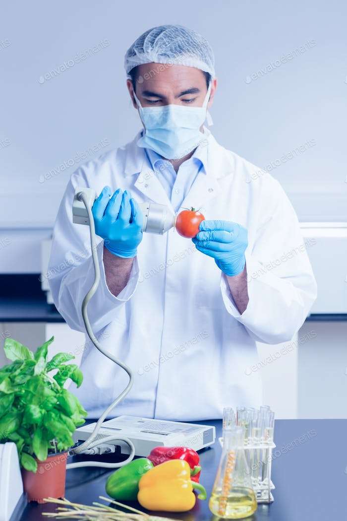 Food scientist using device on tomato at the university