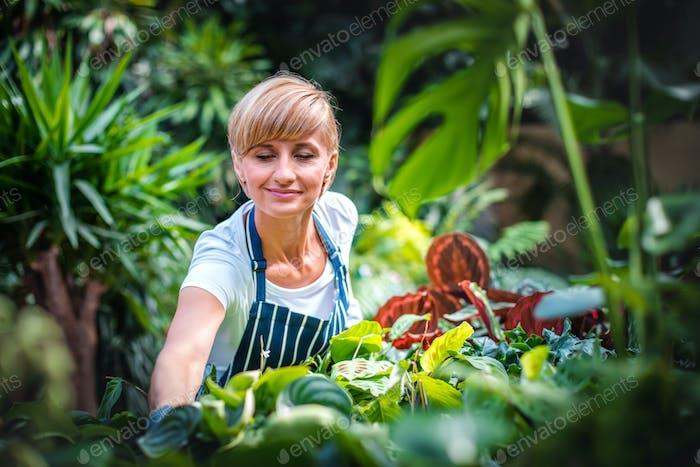 Lächelnde Mitarbeiter während der Arbeit im Gartencenter