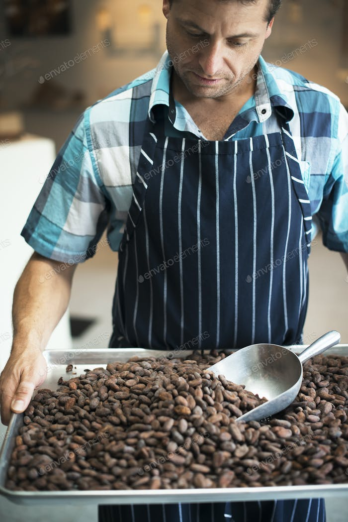 A chocolatier with a tray of cocoa beans, Theobroma cacao.