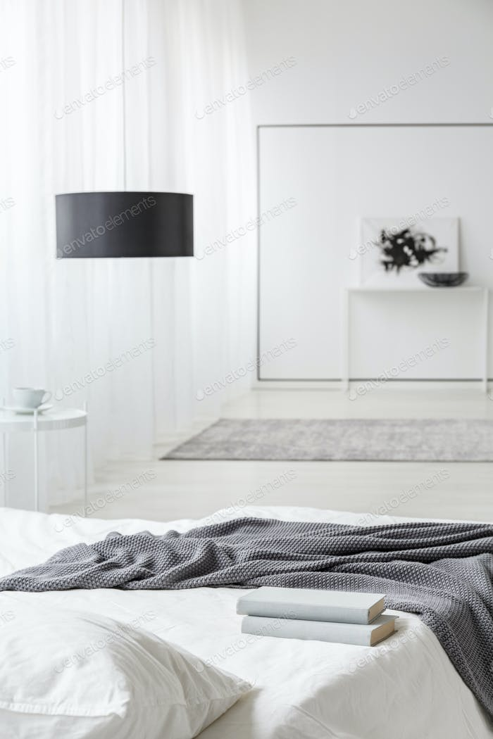 Monochromatic bedroom interior