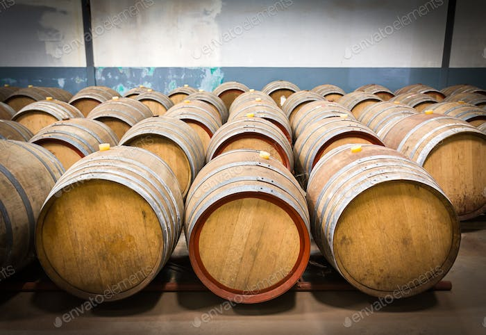 Wine barrels in the cellar of the winery-5