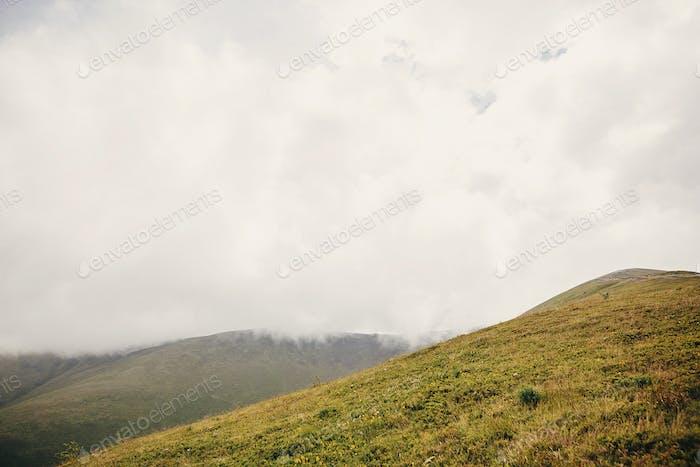 schöner Hügel mit Gras in nebligen Wolken und Nebel, sonnigen Bergen