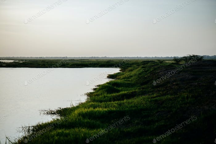 Landscape with swamp for agriculture background