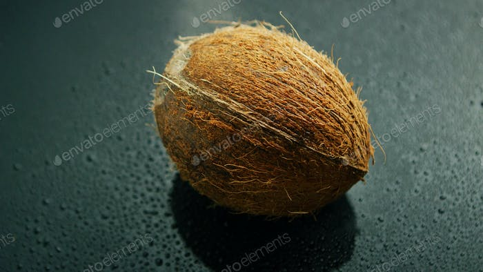 Whole unpeeled coconut