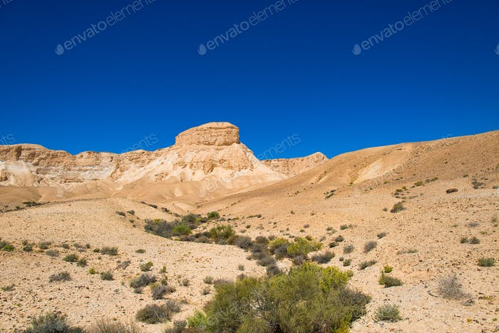 Desert of the Negev