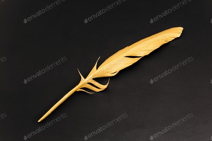 Gold feather on a black background