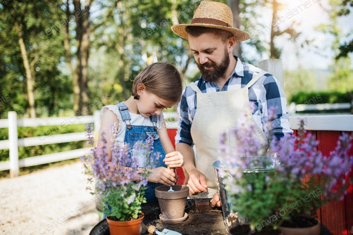 Ein Vater mit kleiner Tochter im Freien auf Familienfarm, Pflanzen von Kräutern