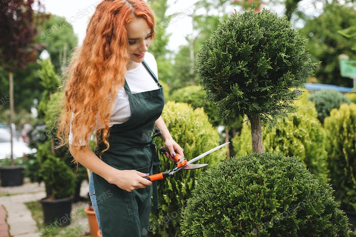 Beautiful lady gardener with redhead curly hair standing in apron and holding big garden scissors