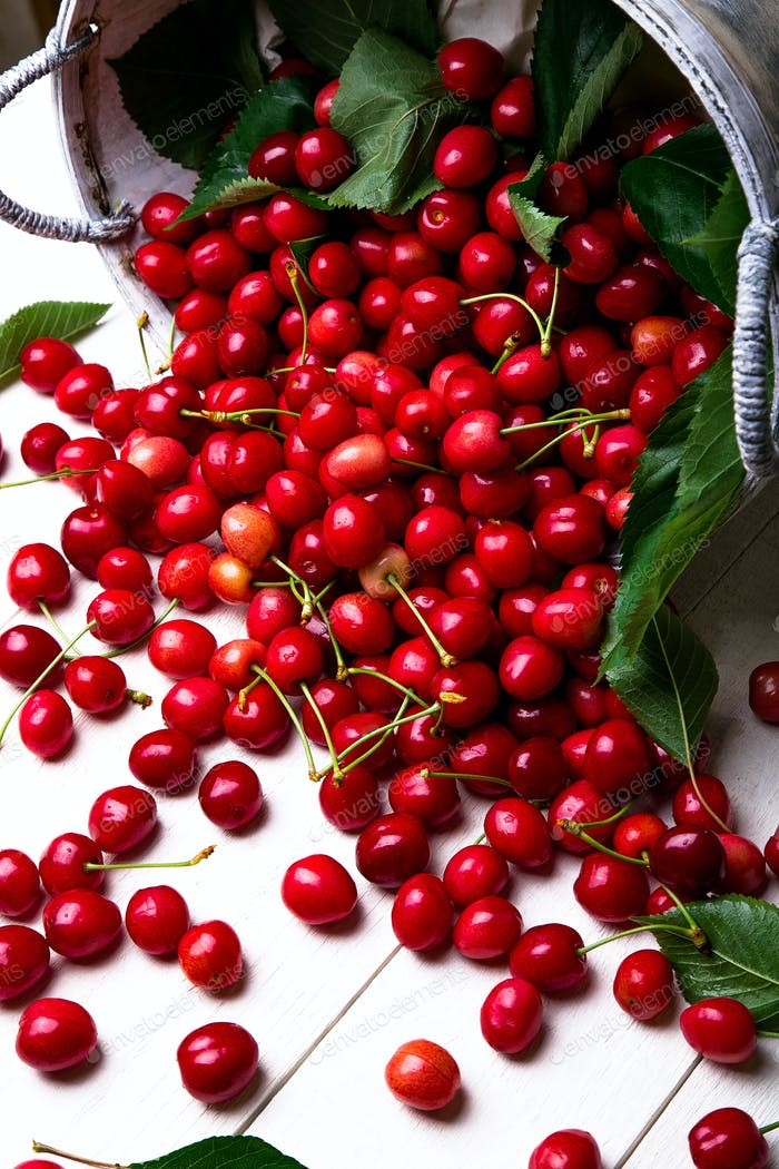 Red cherries in white basket