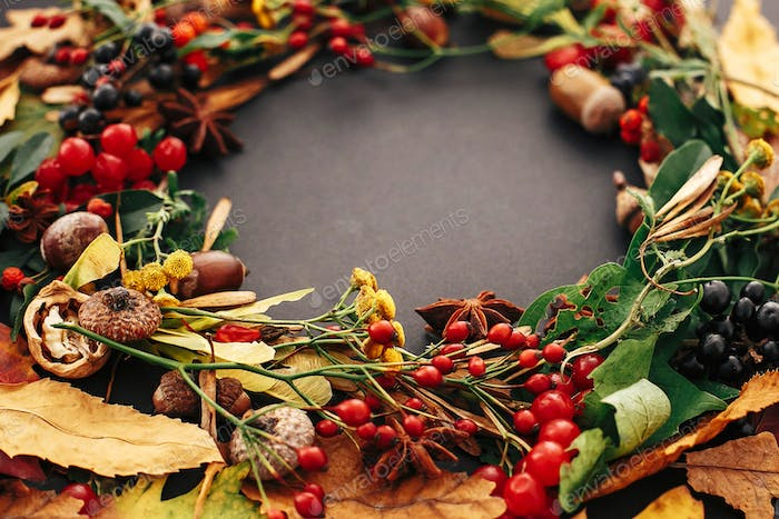 Autumn wreath of fall leaves, red berries, acorns, anise, nuts, autumn flowers closeup