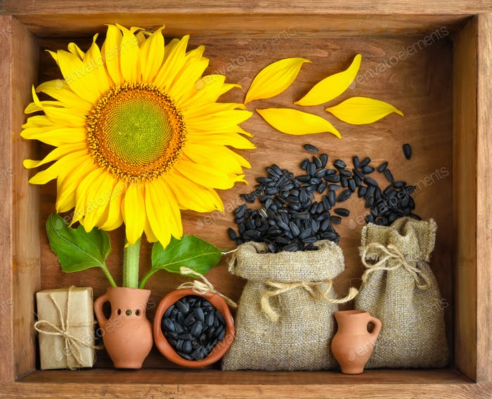 Beautiful composition with sunflower and seeds in bags on wooden