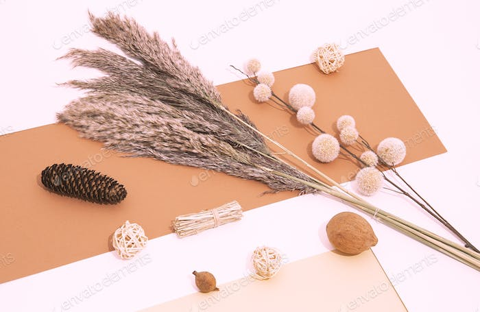 Fall Winter cozy background with plant autumn decor Flat lay for bloggers. Trendy beige color shades