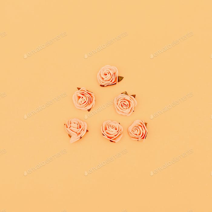 Roses on a pastel background. Candy colors Minimal art