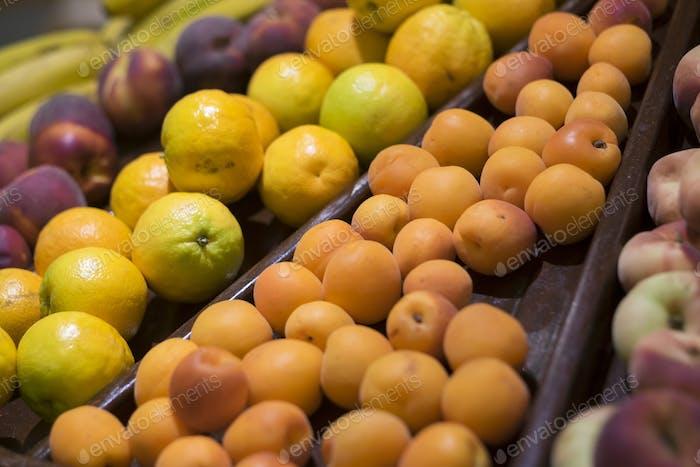 Gemischte, frische Früchte der Saison