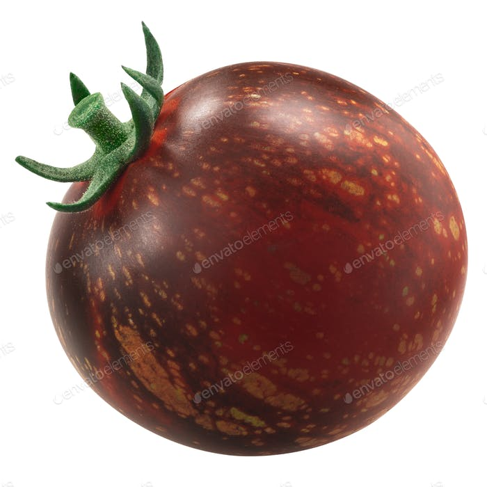 Dark Galaxy heirloom tomato, anthocyan-rich bicolor,  isolated