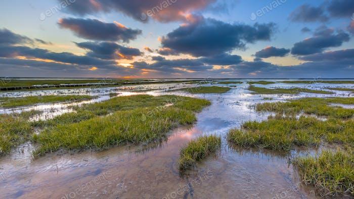 Wadden sea Tidal marsh mud flat