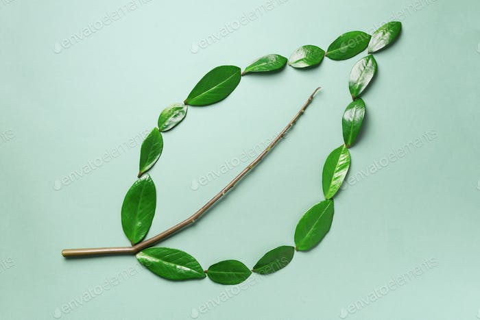 Creative layout. Ecology logo. Organic green leaf made of leaves. Flat lay. Eco friendly planet and