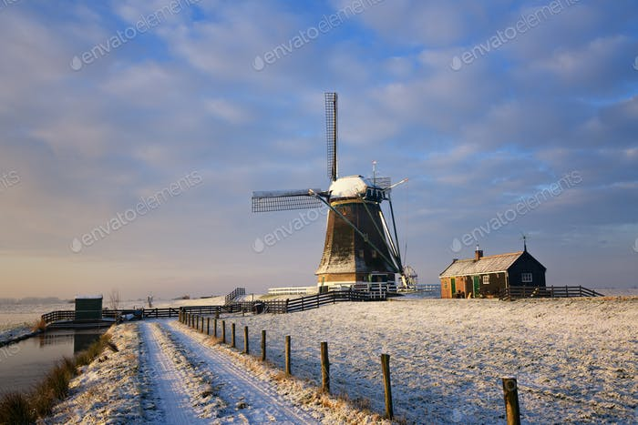 Path towards a windmill in the snow in a dutch winter landscape