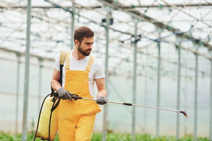Young worker in yellow uniform watering plants by using special equipment