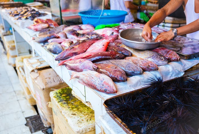Seafood at fish market