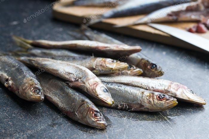 Raw sardines fish.