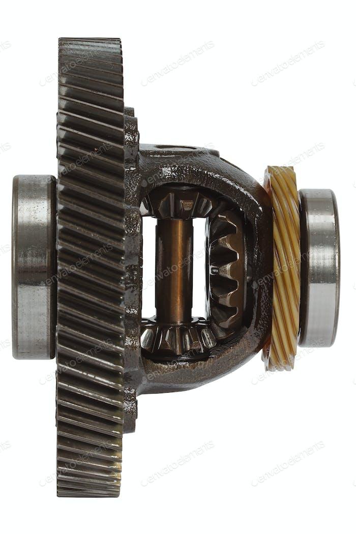 Differential des Getriebes, isoliert auf weißem Hintergrund