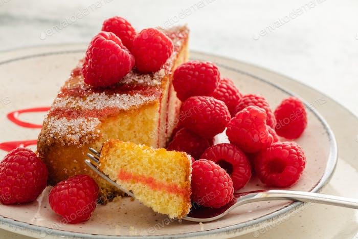 Piece of homemade sponge cake