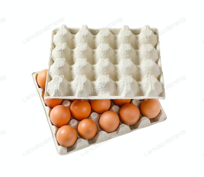 Carton of twenty fresh eggs