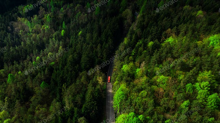 Red car drive on curvy road in green forest, aerial drone view