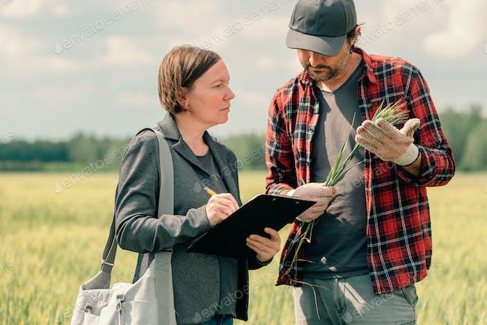 Hypothekendarlehen Offizier unterstützt Landwirt in finanziellen Zulagen Antragsprozess