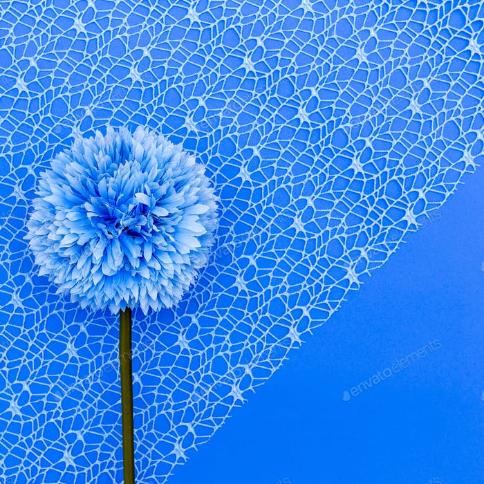 Blue flower on a blue background minimal art