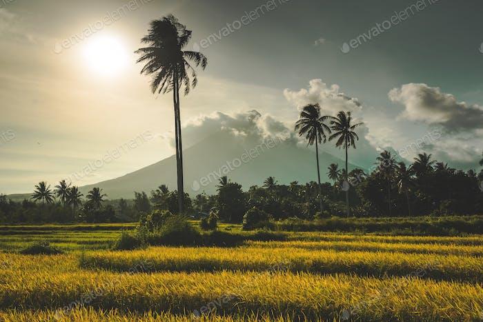 Gunung Merapi, un volcán en Java, Indonesia