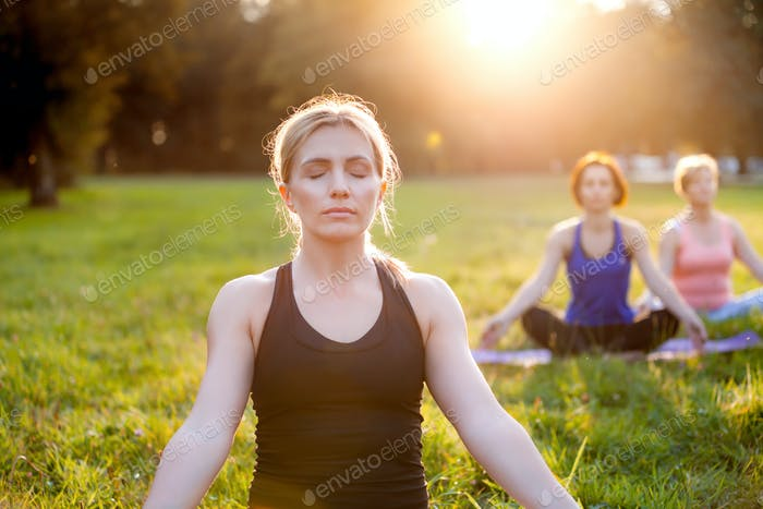 Yoga in the park, group of mixed age women practicing yoga and meditating while sunset
