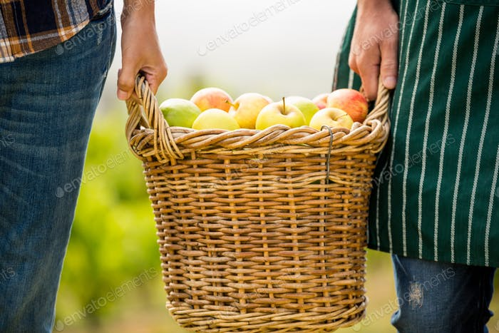 Cropped hands of man and woman holding apple basket