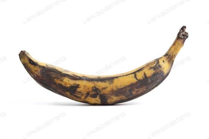 Fresh single South American banana
