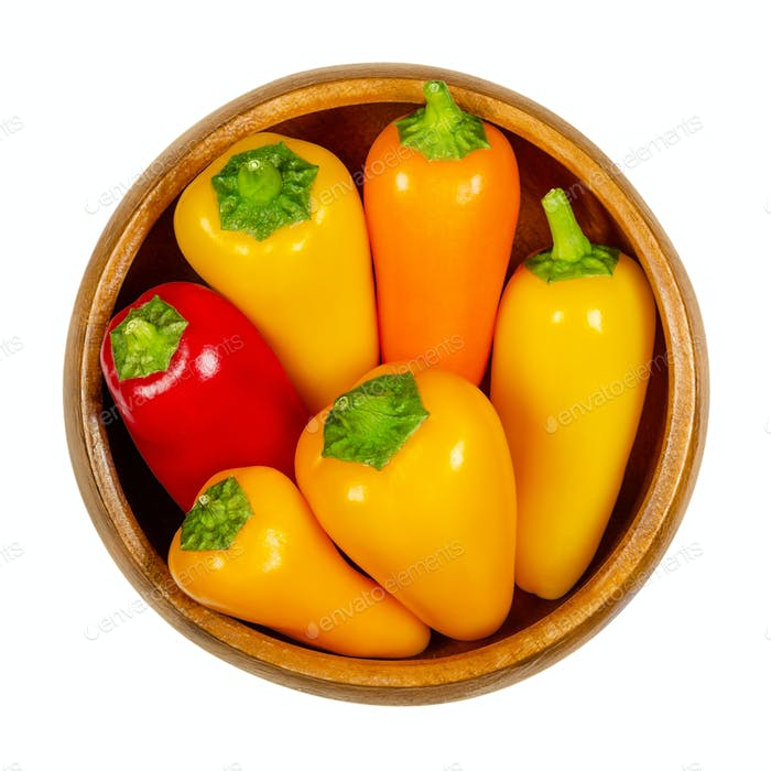 Colorful bell peppers, fresh sweet peppers, capsicum in wooden bowl