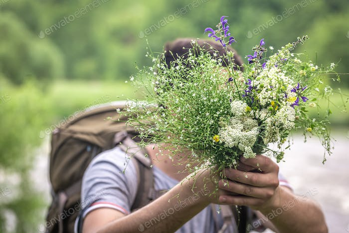 Close-up of a bouquet of wildflowers in the hands of a male traveler.