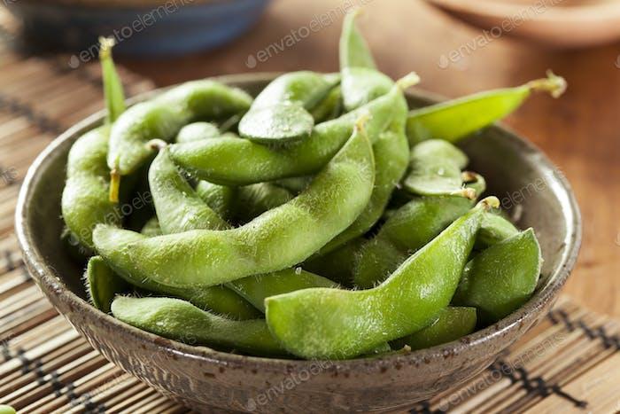 Green Organic Edamame with sea salt